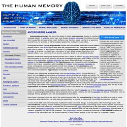 Anterograde Amnesia - Memory Disorders - The Human Memory