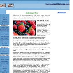 Anthocyanins - Powerful Anti-inflammatory Antioxidants Found in Berries