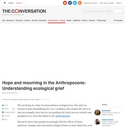 Hope and mourning in the Anthropocene: Understanding ecological grief