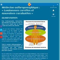 Médecine anthroposophique : «Lumineuses carottes et mauvaises cacahuètes»