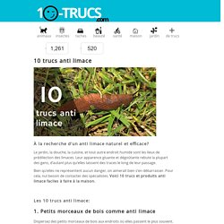 10 trucs anti limace