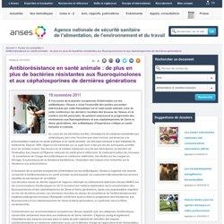 ANSES 18/11/11 Antibiorésistance en santé animale : de plus en plus de bactéries résistantes aux fluoroquinolones et aux céphalo