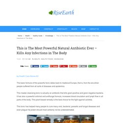This is The Most Powerful Natural Antibiotic Ever – Kills Any Infections in The Body - RiseEarth