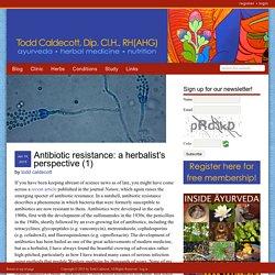 Antibiotic resistance: a herbalist's perspective (1)