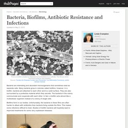 Bacteria, Biofilms, Antibiotic Resistance and Infections