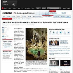 Ancient antibiotic-resistant bacteria found in isolated cave - Technology & Science
