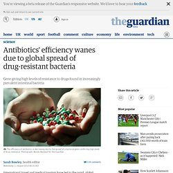 THE GUARDIAN 11/08/10 Antibiotics' efficiency wanes due to global spread of drug-resistant bacteria - Gene giving high levels of