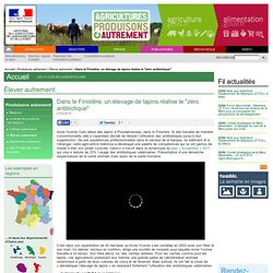 """MAAF 04/06/13 Dans le Finistère, un élevage de lapins réalise le """"zéro antibiotique"""
