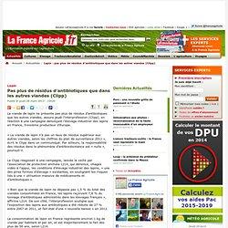 FRANCE AGRICOLE 28/03/13 Lapin - Pas plus de résidus d'antibiotiques que dans les autres viandes (Clipp)
