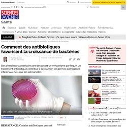 Comment des antibiotiques favorisent la croissance de bactéries