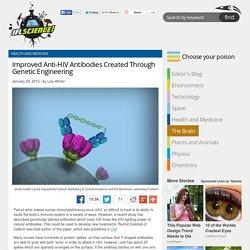 Improved Anti-HIV Antibodies Created Through Genetic Engineering