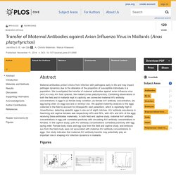 PLOS 11/11/14 Transfer of Maternal Antibodies against Avian Influenza Virus in Mallards (Anas platyrhynchos)