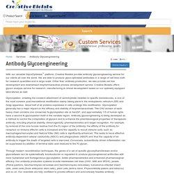 Antibody Glycoengineering - Creative Biolabs