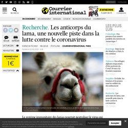 Les anticorps du lama, une nouvelle piste dans la lutte contre le coronavirus?