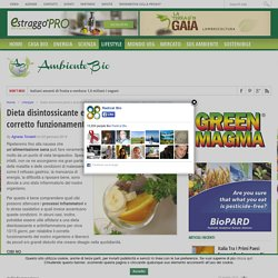 Dieta disintossicante e antinfiammatoria per il corretto funzionamento del nostro organismo - Ambiente Bio