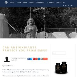 Can Antioxidants Protect You From EMFs? - PrimalHacker
