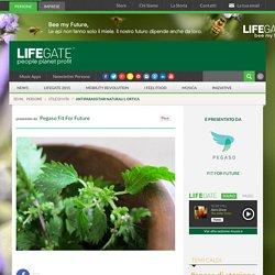 Antiparassitari naturali: l'ortica