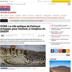 SYRIE. La cité antique de Palmyre échappe, pour l'instant, à l'emprise de DAESH - Sciencesetavenir.fr
