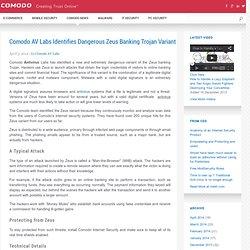 AV Labs Identifies Dangerous Zeus Banking Trojan Variant