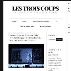 « Riquet», d'AntoineHerniotte d'après «Riquet àlahouppe» deCharlesPerrault, ThéâtreAmStramGram àGenève