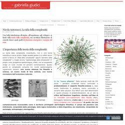 Nicola Antonucci, La sida della complessità