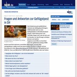 NDR 19/11/16 Fragen und Antworten zur Geflügelpest im Norden