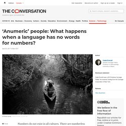 'Anumeric' people: What happens when a language has no words for numbers?