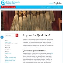Anyone for Quidditch?