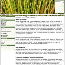 Anzucht von Pflanzensamen