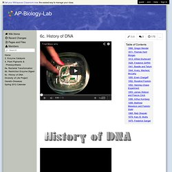 an introduction to the analysis of dna replication Dna structure and replication introduction concept 1: biosynthesis of dna practice (1 page) analysis of dna by gel electrophoresis.