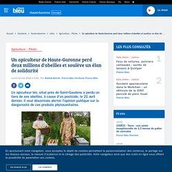 Un apiculteur de Haute-Garonne perd deux millions d'abeilles et soulève un élan de solidarité