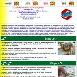 Faire bâtir les cadres de cire gaufrée