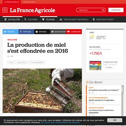 FRANCE AGRICOLE 08/06/17 La production de miel s'est effondrée en 2016