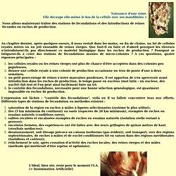 Apiservices - Cours - Elevage et sélection reines - Fécondations