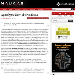 Apocalypse Now: el virus Ébola