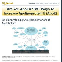 Are You ApoE4? 88+ Ways To Increase Apolipoprotein E (ApoE) — MyBioHack