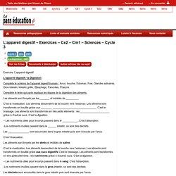L'appareil digestif – Exercices – Ce2 – Cm1
