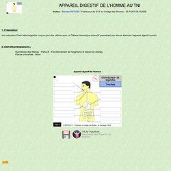 Appareil digestif de l'Homme au TNI