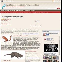 Apparition des premiers mammifères, Crusafontia, Eomaia, euthérien Les toutes, toutes premières fois