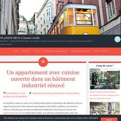 Un appartement avec cuisine ouverte dans un bâtiment industriel rénové