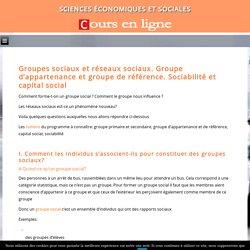 Groupes sociaux et réseaux sociaux. Groupe d'appartenance et groupe de référence. Sociabilité et capital social