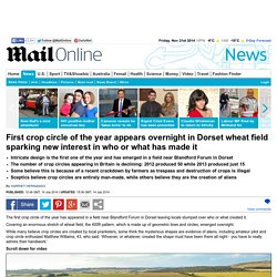 Crop circle appears in Dorset field sparking interest in who or what made it
