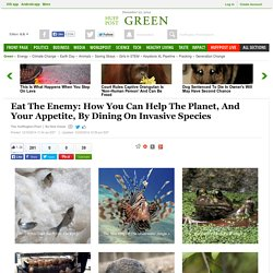 Eat The Enemy: How You Can Help The Planet, And Your Appetite, By Dining On Invasive Species