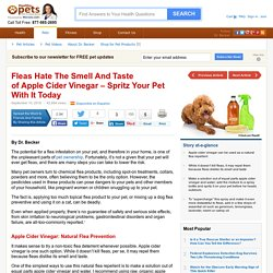Apple Cider Vinegar for Flea Prevention