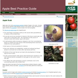 Apple Scab - Apple Best Practice Guide