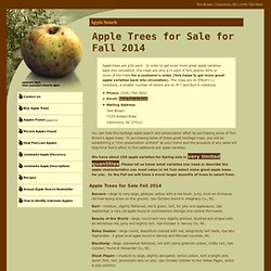 Apple Search - Apple Trees for Sale