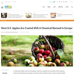 Most U.S. Apples Are Coated With A Chemical Banned In Europe