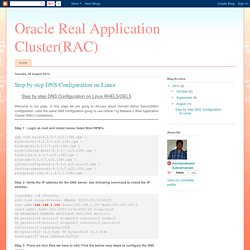 Oracle Real Application Cluster(RAC): Step by step DNS Configuration on Linux