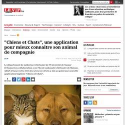 """""""Chiens et Chats"""", une application pour mieux connaître son animal de compagnie - Sciences"""