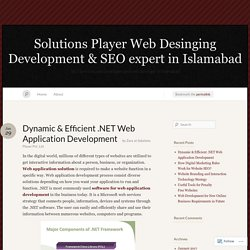 Dynamic & Efficient .NET Web Application Development « Solutions Player Web Desinging Development & SEO expert in Islamabad